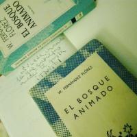 La gloriosa novela de Wenceslao Fernández Flórez